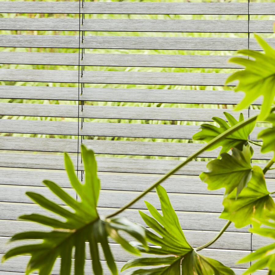 store vénitien bois heytens plante feng shui